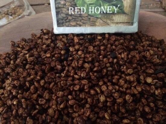 레드허니프로세스 (red honey process) 란 무었인가? 자료실 - 아나카페 _ 과테말라 스페셜티 커피 전문 기업·카페
